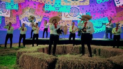 Banda Carnaval - La Muerte De Un Gallero