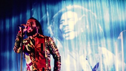 Ziggy Marley - Coming In From The Cold