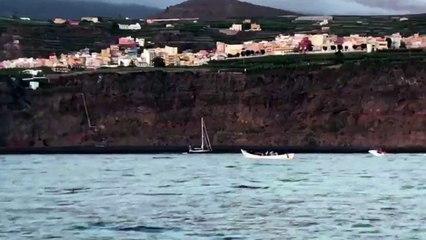 Llega una patera al Puerto de Tazacorte
