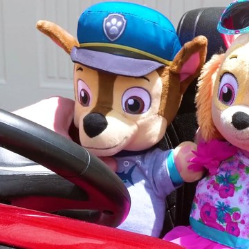 Paw Patrol's Skye and Chase's fun day at the Playground & No Bullying at School Baby Pups Videos