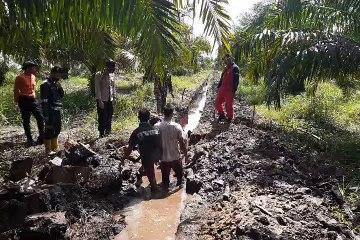 Warga Desa Muntialo Membuat Sekat Kanal di Kebun Mereka