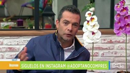 adopta_no_compres