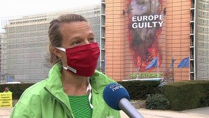 """""""L'Amazonia brucia per colpa dell'UE"""", l'eco-protesta di Greenpeace"""