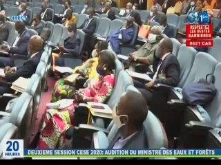 RTG / Audition du Ministre des Eaux et Forêts à la 2éme session du CESE