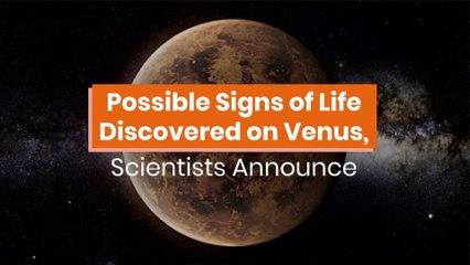 Venus Might Have Life