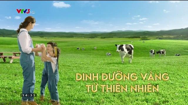 Yêu Trong Đau Thương Tập 14 - Ngày 13/9/2020 - Phim Việt Nam VTV3