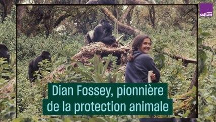 Dian Fossey, pionnière de la protection animale