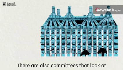 What are select committees