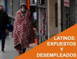 Cápsula 20 - Latinos: Expuestos y Desempleados