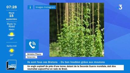 La matinale de France Bleu Breizh Izel du 15/09/2020