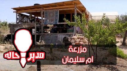 الحلقة الثالثة - مزرعة ام سليمان - مدير حاله