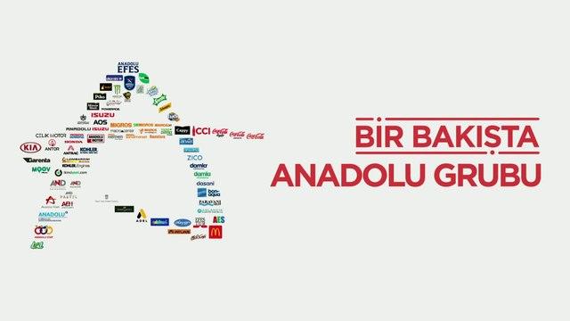 Bir Bakışta Anadolu Grubu