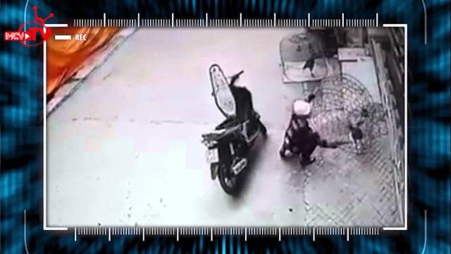 Trộm cắp khắp mọi nơi - đến cái chuồng chim cũng bị trộm.