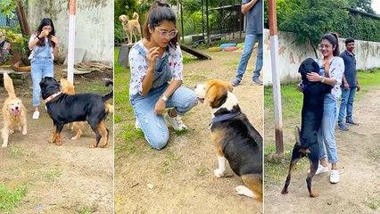 Sanskruti Balgude Pays Visit To Dog Farm