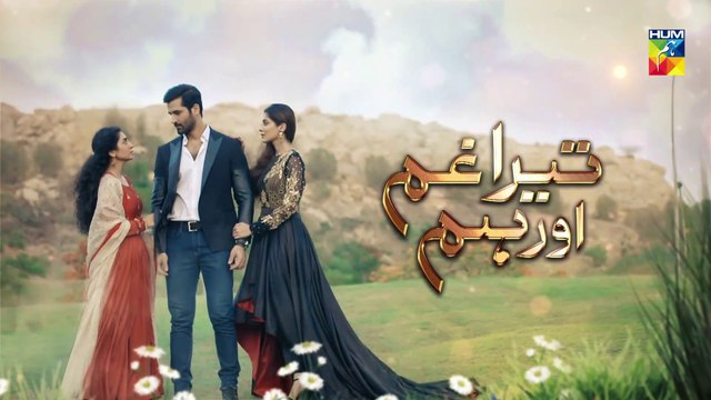 Tera Ghum Aur Hum Episode 24 HUM TV Drama 17 September 2020