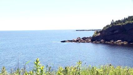 Québec protège plus de zones marines