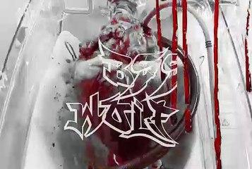 MVGEN: BSS Wolf : Wire