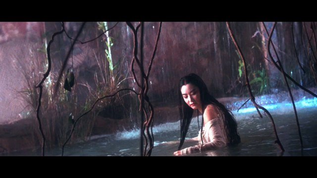 THE BRIDE WITH WHITE HAIR Movie (1993) - Brigitte Lin, Leslie Cheung, Francis Ng