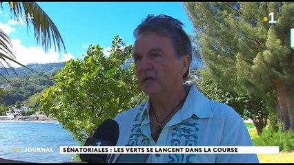 Sénatoriales : Heiura les verts veulent porter l'idéologie écologiste au plan national