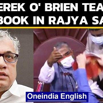 Derek O' Brien claims didn't tear the rule book in Rajya Sabha
