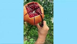 Tik Tok Trung Quốc ● Những video tik tok tri