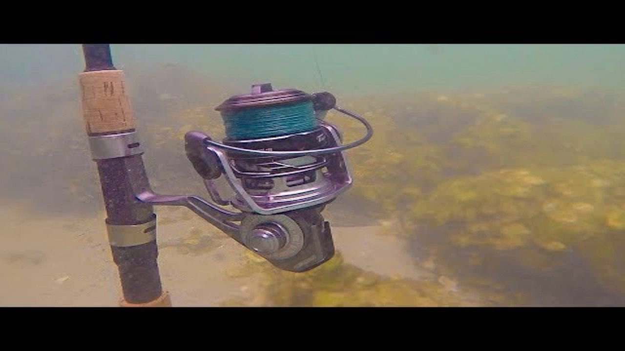 BAD IDEA_ Fishing with Saltwater Submerged Reel