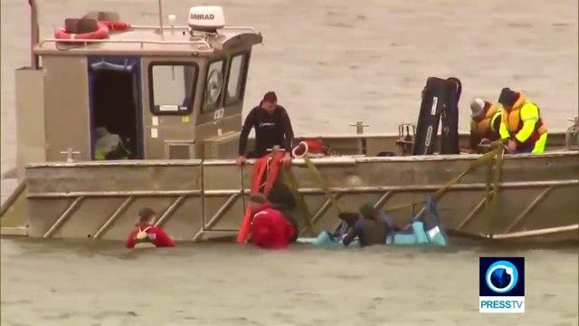 Australian rescuers save around 25 whales stranded on sandbar