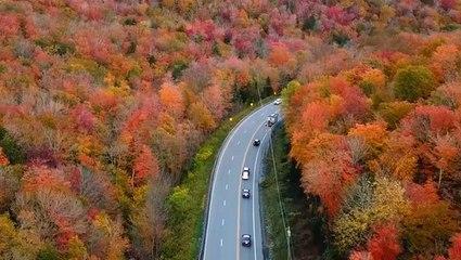 What fall looks like around the world