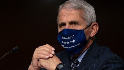 Rand Paul Goes Full 'Herd Immunity' On Fauci, And Fauci's Not Having It