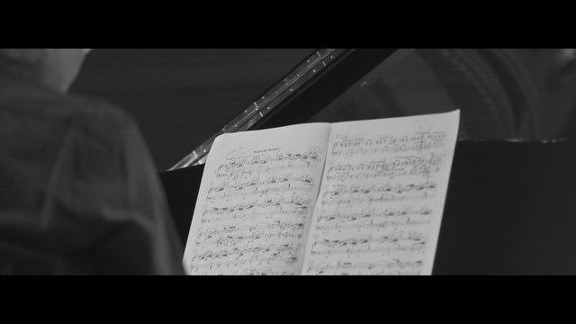 Kun-Woo Paik - Schumann:  Waldszenen, Op. 82: 7. Vogel als Prophet