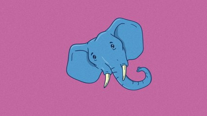 Lasso - Elefantes En La Barriga