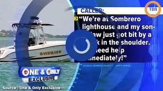 Une femme enceinte plonge du bateau pour sauver son mari d'une attaque de requin