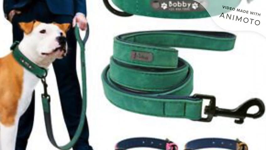 Remote Dog Collar