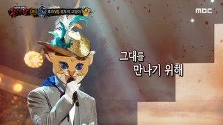 [2round] 'Butturmak kitten' - It was just in love 복면가왕 20200927
