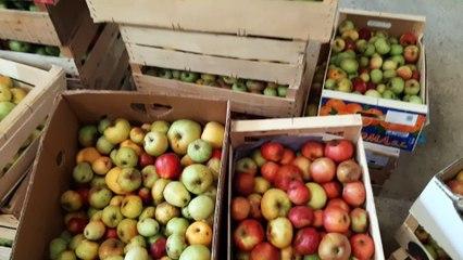 L'opération Croque ton jus pose ses valises au lycée agricole de Mirande dans le Gers