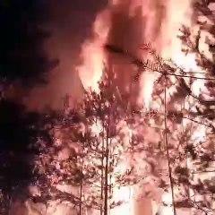 Devastante incendio in Russia: distrutto un intero cimitero