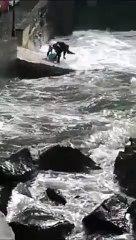 Tartaruga ferita in difficoltà nelle acque in tempesta del mare di Ischia: le immagini del salvataggio