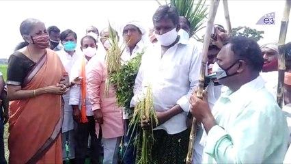 Central Minister Nirmala Sitharaman Meet Farmers At Vijayawada   E3 Media
