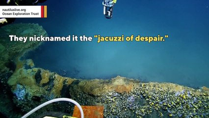 The forbidden jacuzzi on the seafloor