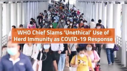 WHO Chief On Herd Immunity Issues