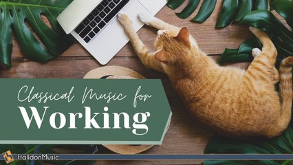 various artist - Classical Music for Working