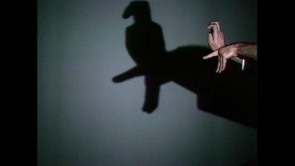 Albert Almonzino - Hand Shadows
