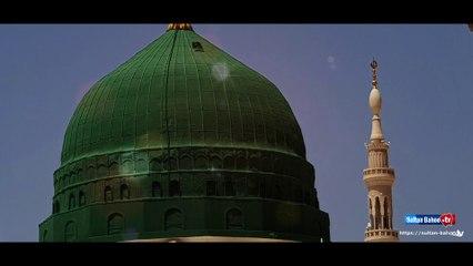 Best New Naat | Madine Wala Amna Da Lal | Rabi ul Awal Naat | Sultan Bahoo TV
