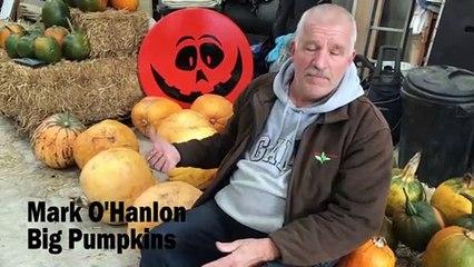 Mark O'Hanlon at Big Pumpkins
