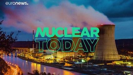 La vie reprend peu à peu ses droits dans la zone d'exclusion de Tchernobyl