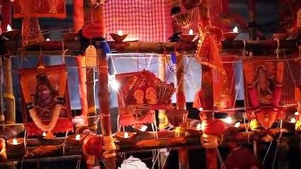 Hindustan Park Sarbojonin - Durga Puja 2020