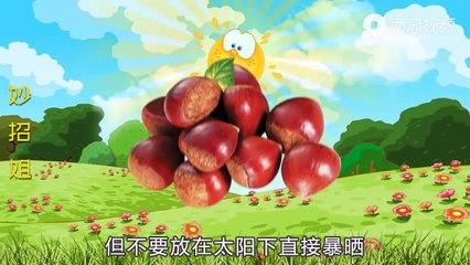 【Store chestnuts】原来保存板栗这么简单,学会这个方法,越放越甜,保存一年都新鲜