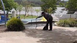 Il découvre un énorme serpent dans un parc pour enfant