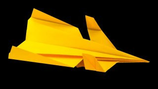 Learn to Fold the Canard Paper Airplane