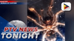 BOC intercepts shipment of 119 tarantulas